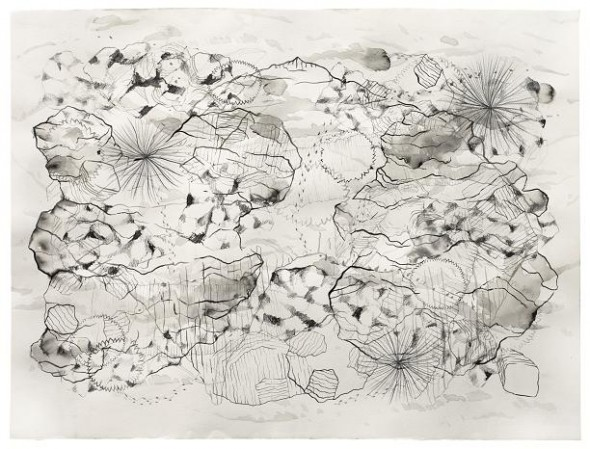 Vestigis bn II ,2014 56x76 cm, tècnica mixta sobre paper