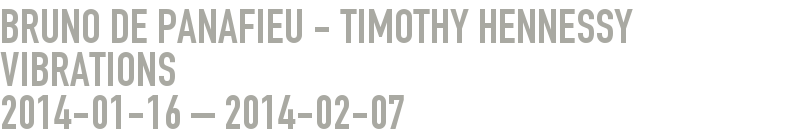 Bruno de Panafieu - Timothy Hennessy  Vibrations 2014-01-16 - 2014-02-07