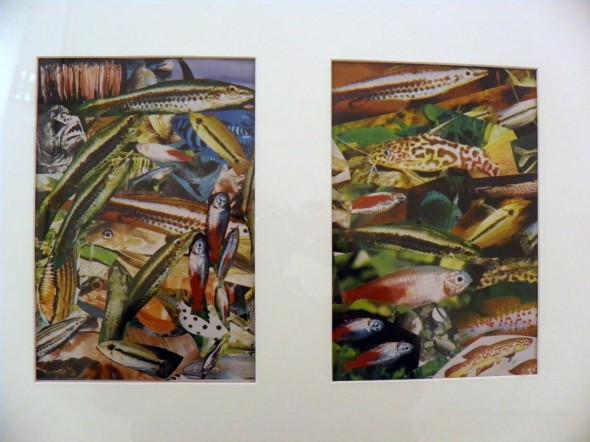 """""""Aquarium I und II"""" C-Print, 30 x 20 cm, 2001  Veröffentlicht in  Texte zur Kunst Nr. 41 Ed 150+10 AP"""