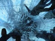 Inside Motohiko Odani Inferno video and sound installation at Mediations Biennale